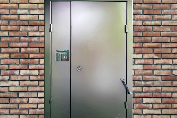 домофоны железные двери