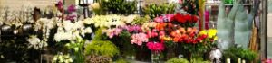 Як відкрити магазин квітів: основні нюанси